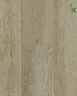 Venetian Oak