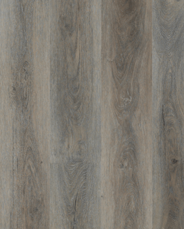 Highland Silver Oak