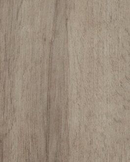 Grey Autumn Oak